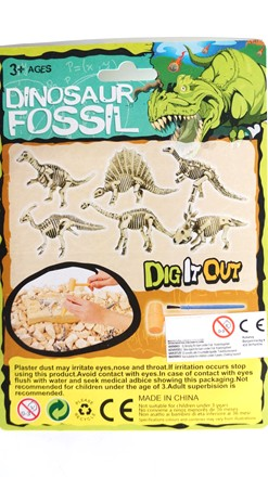 Dig out  dinofossil